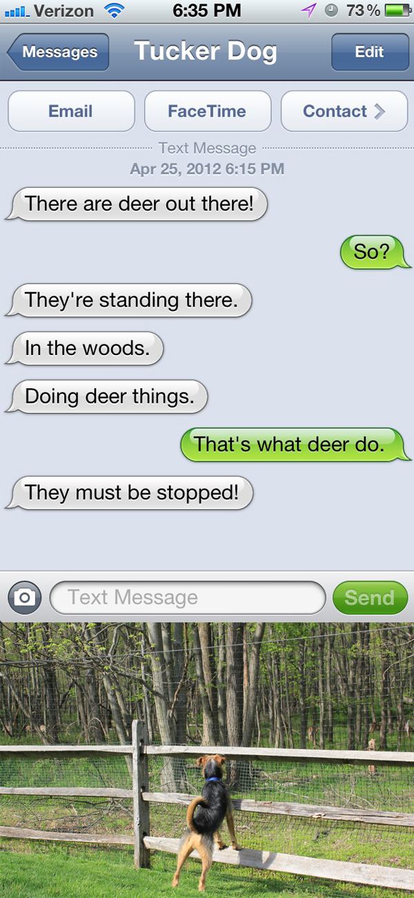 Text from dog: Deer! Standing there! Doing deer things. They must be stopped!