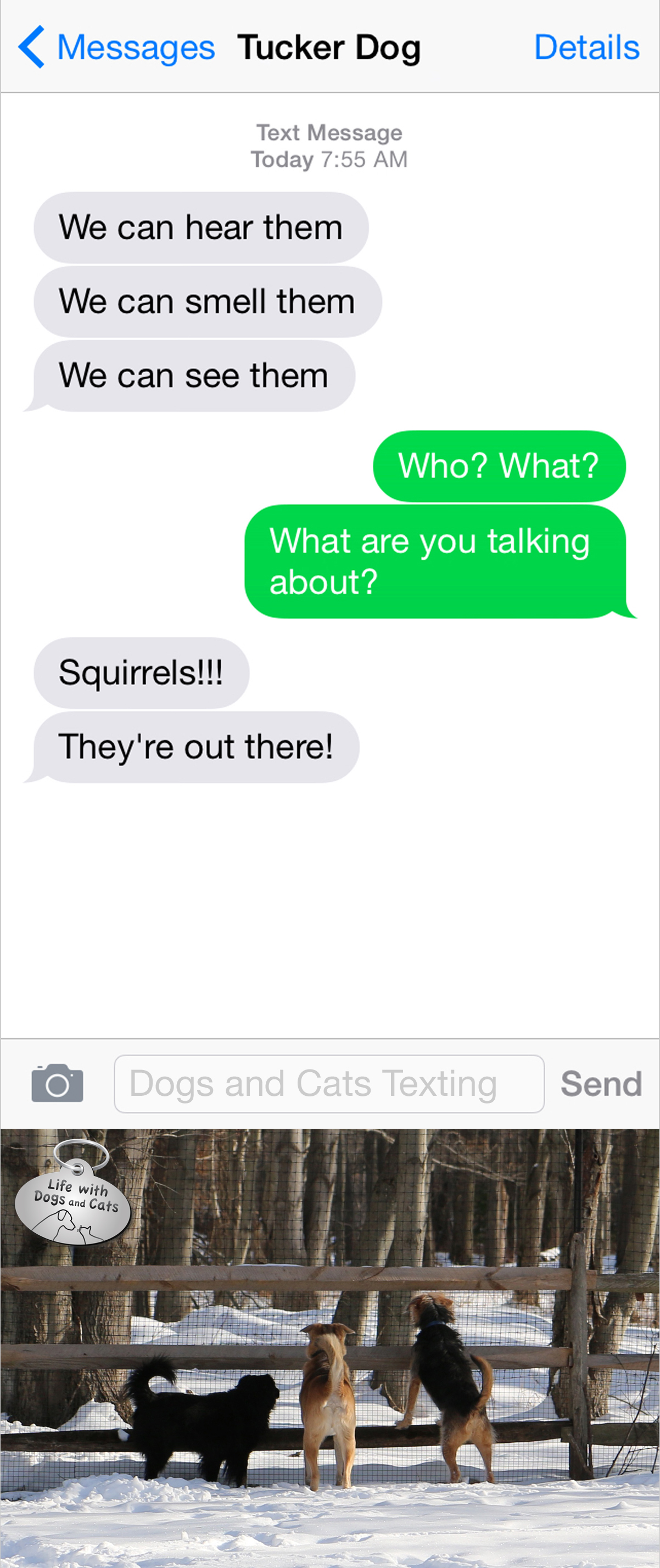 Text from Dog: They're out there!