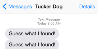 Text from Dog: Guess what I found?