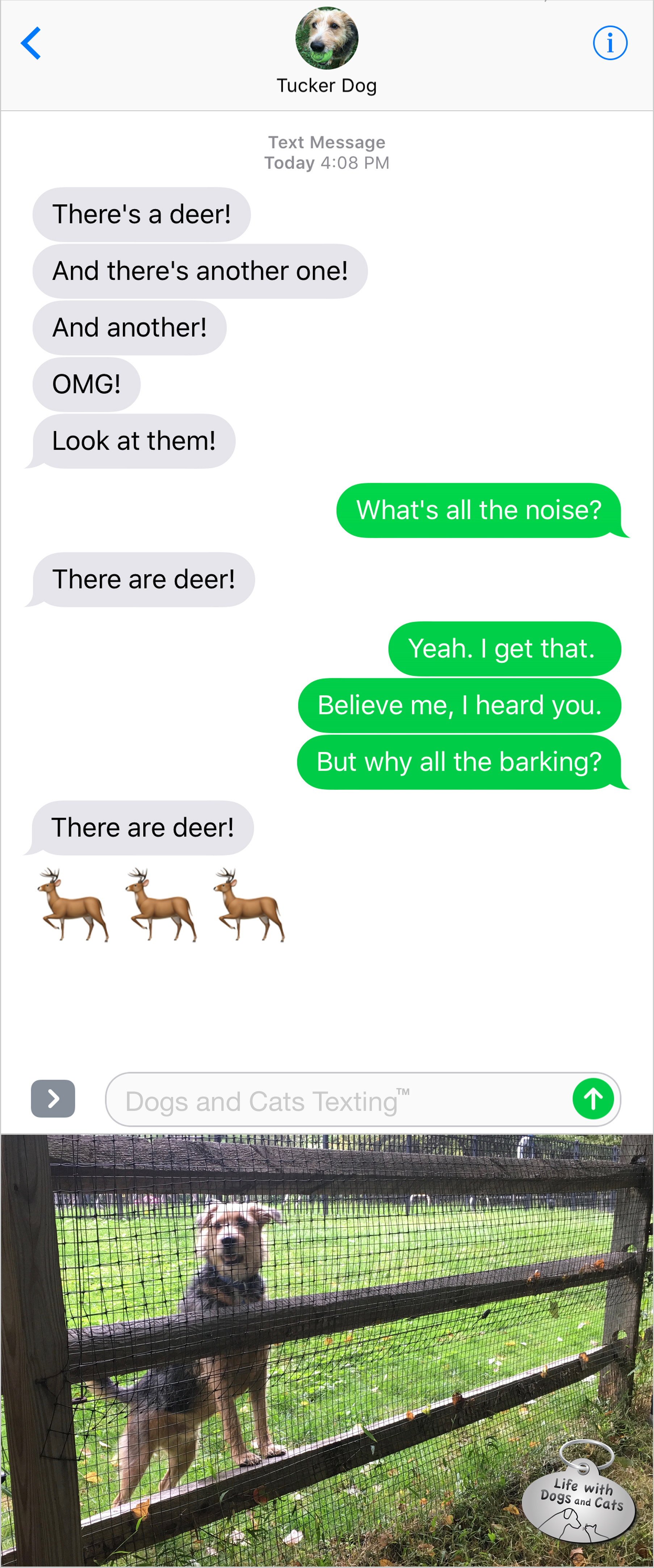 #TextFromDog There's a deer. And another one. An another. OMG. Me: Why all the barking. Dog: There are deer!