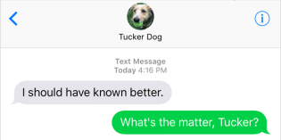 Text from Dog: That really bugs me