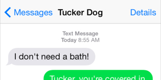 Text from Dog: Mud. Bath.