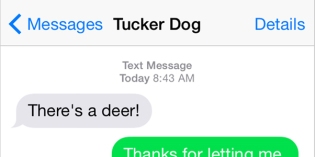 Text from Dog: Deer, deer, deer