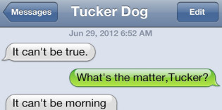 Text from Dog: Tuckered Out