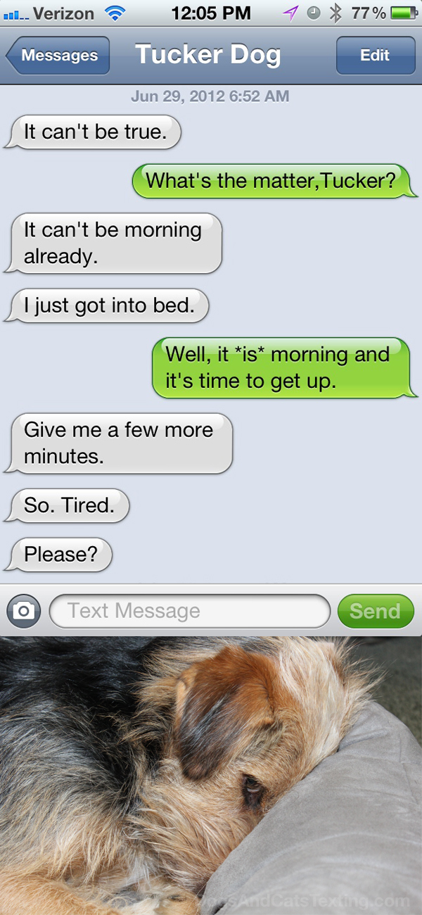 Text from Dog: It can't be morning. I just got into bed.