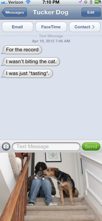 "Text from dog: For the record, I wasn't biting the cat. I was ""tasting."""