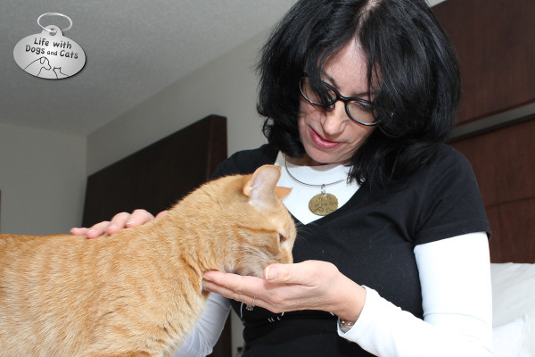 Susan C. Willett gets to spend some time with Waffles the cat.