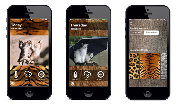 Weather Cats app