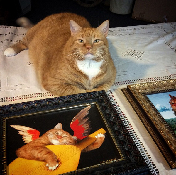 Zarathustra Fat Cat Art with framed prints