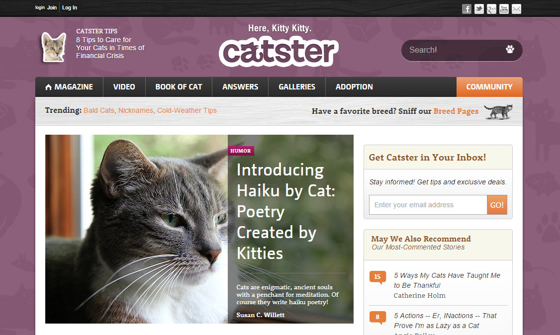 Haiku by Cat on Catster.com