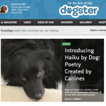 Haiku by Dog / Haiku by Cat now on Dogster / Catster