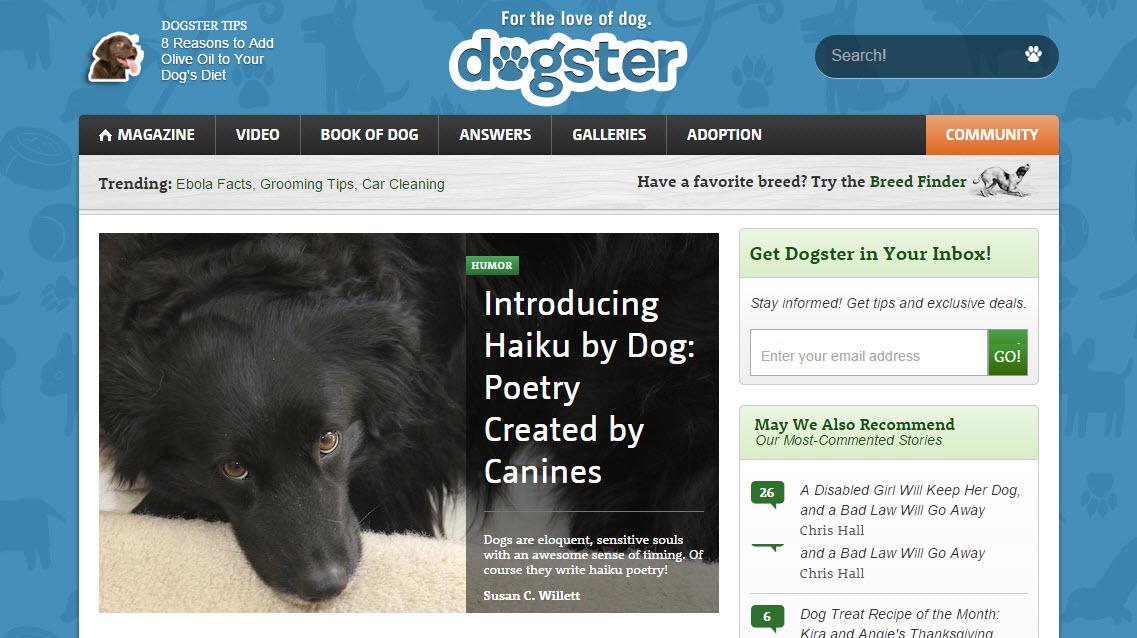 Haiku by Dog on Dogster.com