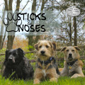 New dog band: Sticks & Noses