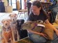 flat-pets-with-capybara-blogpaws-2014