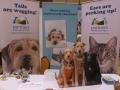 partners-healthy-pets-tucker-lookalike-blogpaws-2014
