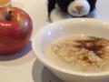 rover-breakfast-blogpaws-2014