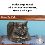 Haiku by Cat: Clock