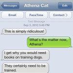 Text from Cat: You'll never understand
