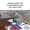 Haiku by Cat: advanced math is not / needed to determine when / cat's dinner is late