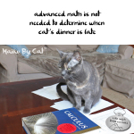 Haiku by Cat: Math