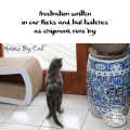 Haiku by Cat: frustration written / in ear flicks and tail twitches / as chipmunk runs by