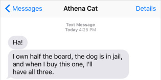 Text from Cat: Playing Games