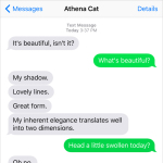 Text from Cat: A shadow of herself