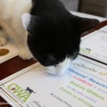 Feline Honored: Nine Certificates of Excellence from the Cat Writers' Association
