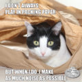 I Don't Always Play in Packing Paper But When I Do I Make As Much Noise As Possible