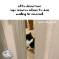 at the dinner hour / hope crouches outside the door / waiting for movement #HaikuByCat