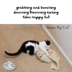 Haiku by Cat: Kick