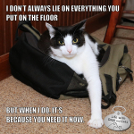 I Don't Always Lie On Everything You Put On The Floor #TheMostInterestingCatInTheWorld