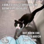 I Don't Always Come Into the Bathroom With You #MostInterestingCatInTheWorld