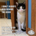 I don't always hide behind doors But when I do it's because you invited strangers over. #MostInterestingCatInTheWorld