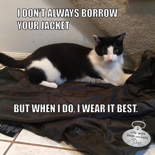 I Don T Always Borrow Your Jacket