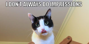 I Don't Always Do Impressions #MostInterestingCatInTheWorld