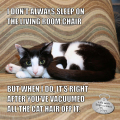 I Don't Always Sleep On The Living Room Chair, but when I do, it's right after you vacuumed all the cat hair off it. Calvin T. Katz., The Most Interesting Cat In The World