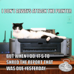 I Don't Always Attack The Printer #MostInterestingCatInTheWorld