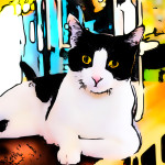 Story: Artify Your Cat