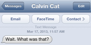 Text from cat: Someone wants to know