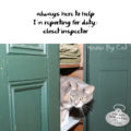#HaikuByCat Always here to help / I'm reporting for duty / closet inspector