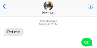 Text From Cat: Again