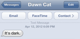 Text from Cat: Darkness all around