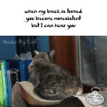 Haiku by Cat: Nonexistent