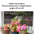 Haiku by Cat: hidden by shadows / tucked behind leaves and pink blooms / jungle cat sees all