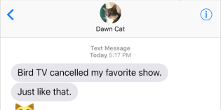 Text from Cat: Cancelled