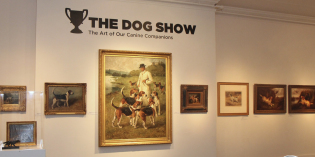 The Dog Show: Art of our Canine Companions