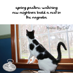 Haiku by Cat: Neighbors