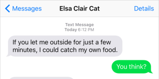 Text from Cat: Dinner plans