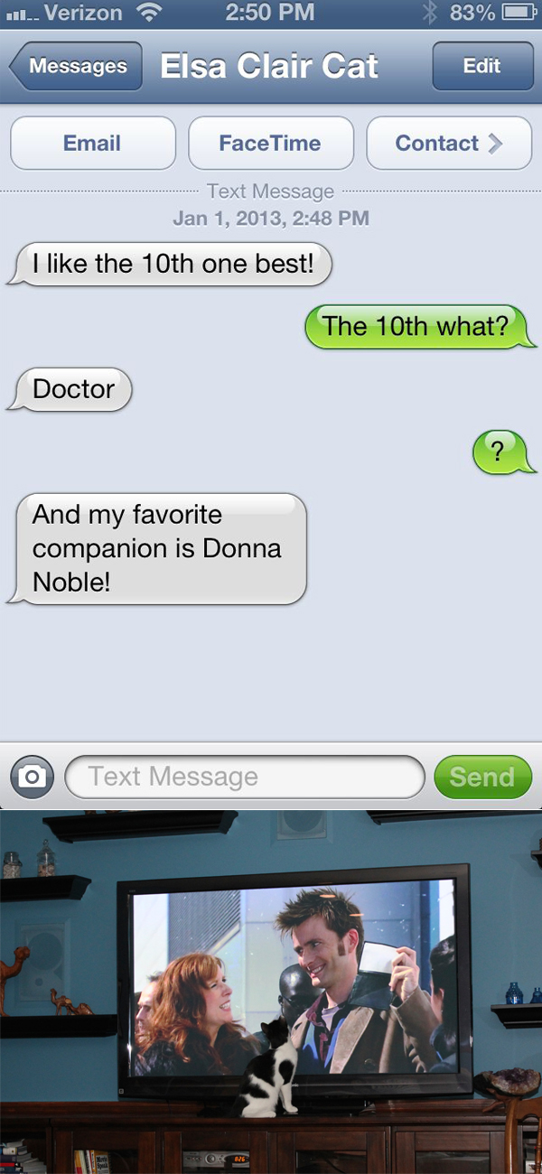 Text From Cat Everyone Loves Doctor Who Life With Dogs
